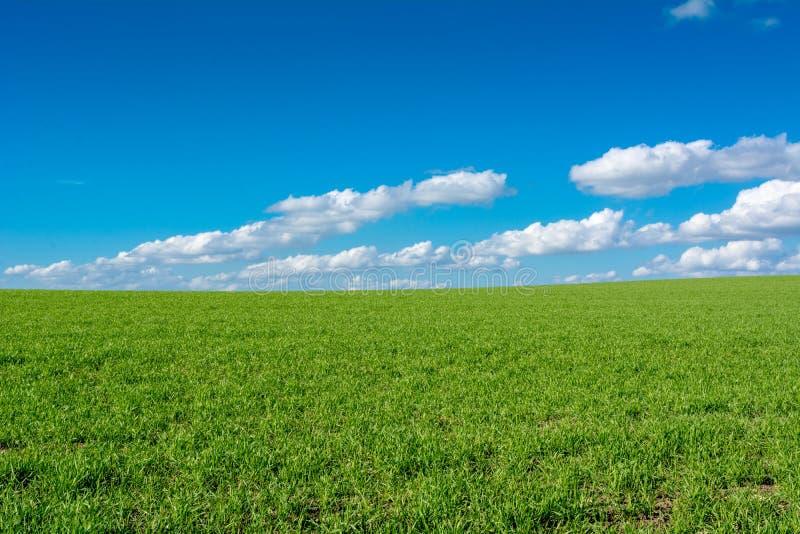 Vista horizontal de un paisaje del campo con un prado verde o foto de archivo libre de regalías