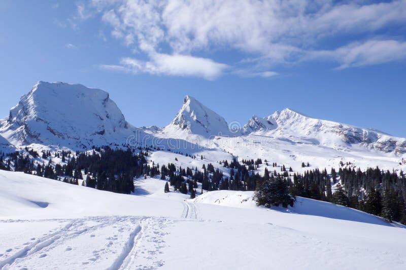Vista horizontal de un paisaje de la montaña del invierno con tres picos y un rastro largo el caminar y de la raqueta en el prime fotografía de archivo libre de regalías