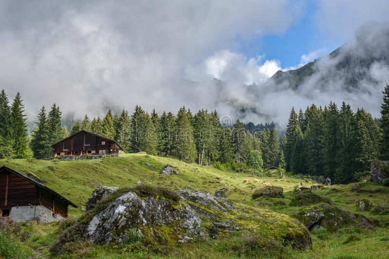 Vista idílico de casas de madeira da exploração agrícola da montanha nos cumes suíços, s fotos de stock royalty free