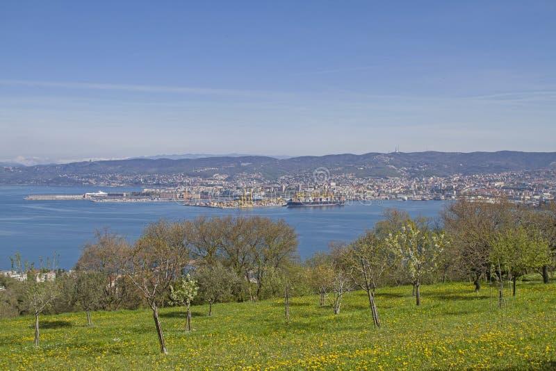 Vista idílico de Trieste em Itália imagem de stock