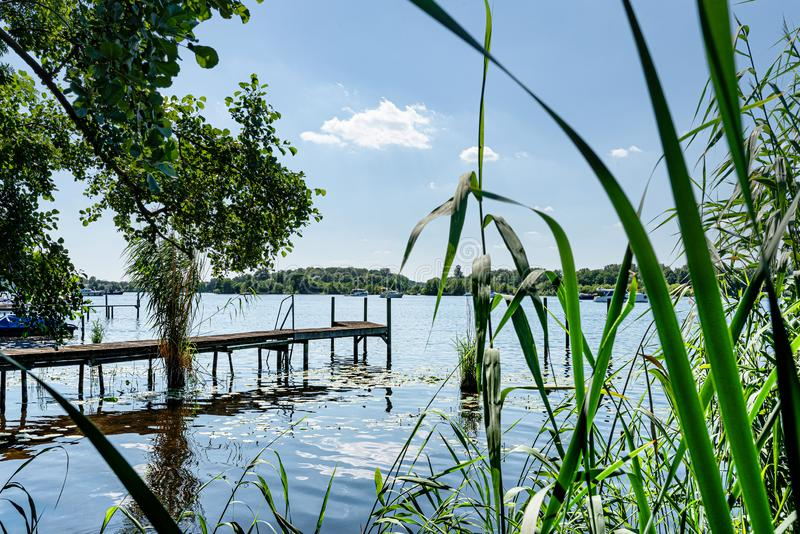Vista idilliaca del fiume di Havel a Berlino con il pilastro e le canne sulla riva fotografie stock libere da diritti