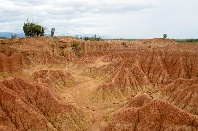 Vista imponente a las arenas coloridas del bosque seco tropical de Tatacoa fotos de archivo