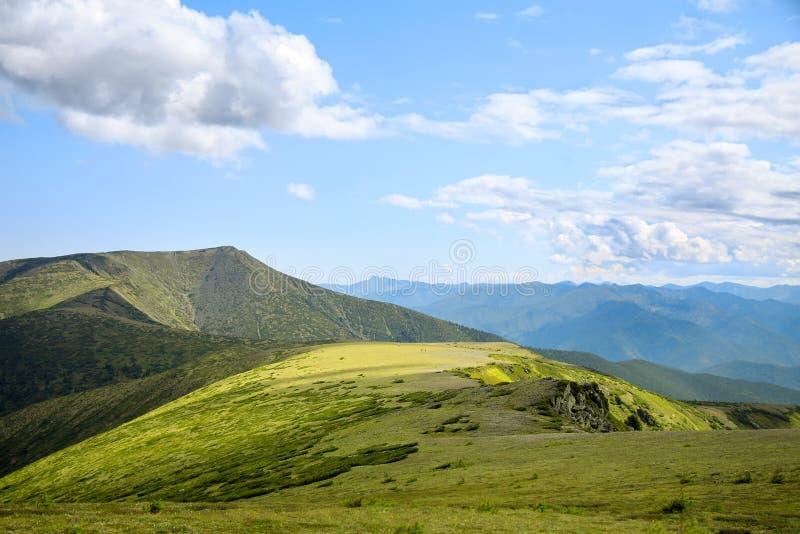 Vista imponente a las montañas cubiertas con la hierba verde y el arbusto fotografía de archivo