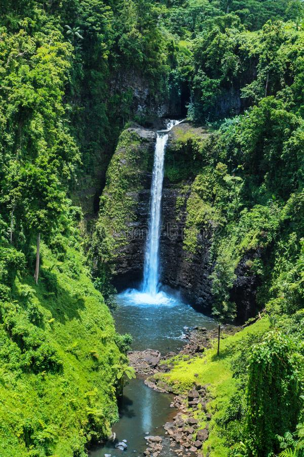 Vista impressionante da cachoeira tropical Samoa de Sopoaga perto acima, destino do feriado do Oceano Pacífico imagem de stock royalty free