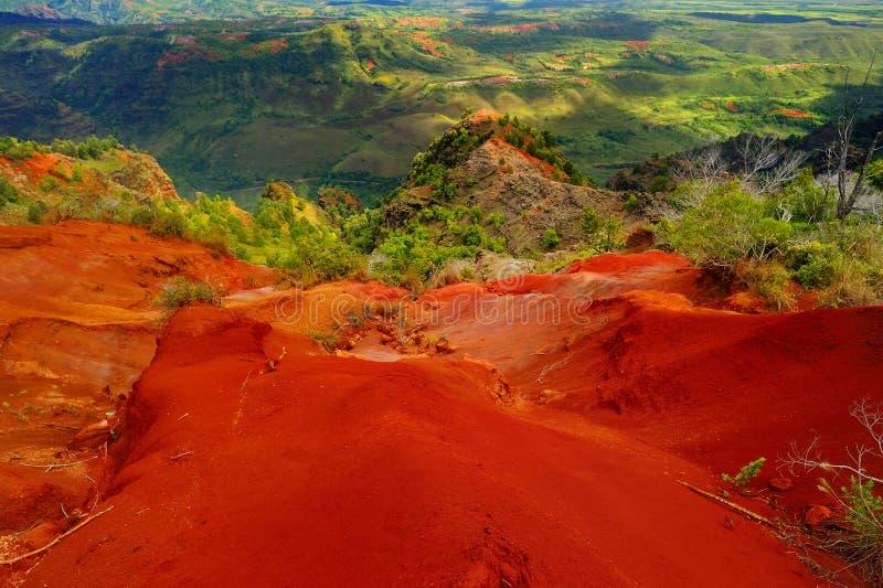 Vista impressionante na garganta de Waimea, Kauai fotografia de stock royalty free