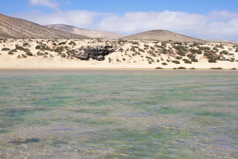 Vista increíble de la playa de Costa Calma, laguna clara azul Playa Barca, Fuerteventura, islas Canarias, España imágenes de archivo libres de regalías