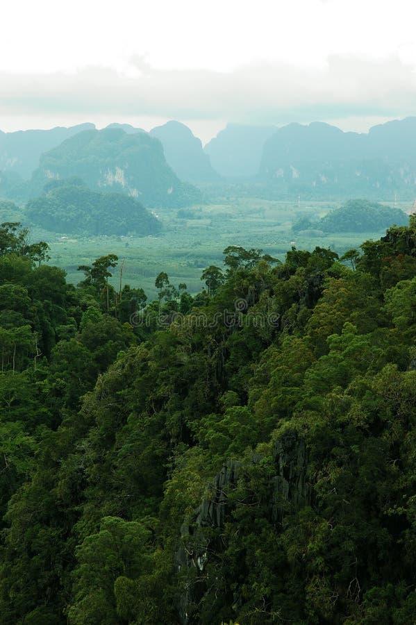 Vista increíble de montañas de la isla de la KOH Samui, Tailandia. imagen de archivo libre de regalías
