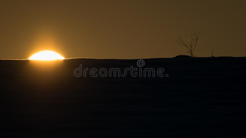 vista increíble del invierno con sol siluetas fotografía de archivo libre de regalías