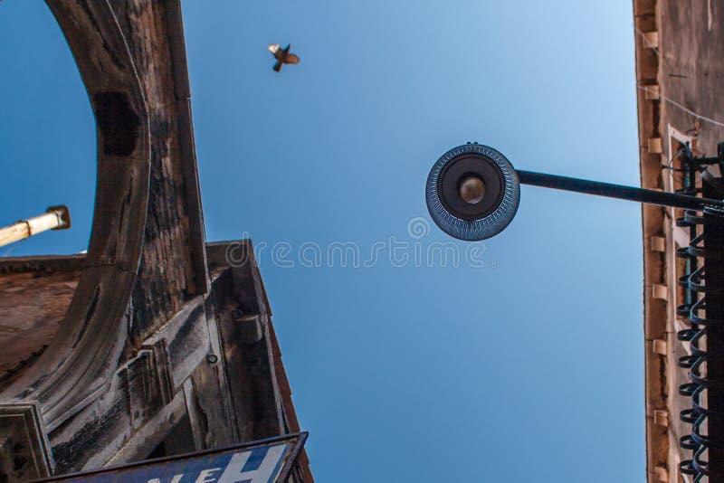 Vista inferior da lâmpada de rua tradicional em uma casa Venetian velha no meio do dia com um pássaro de voo em um azul fotos de stock royalty free