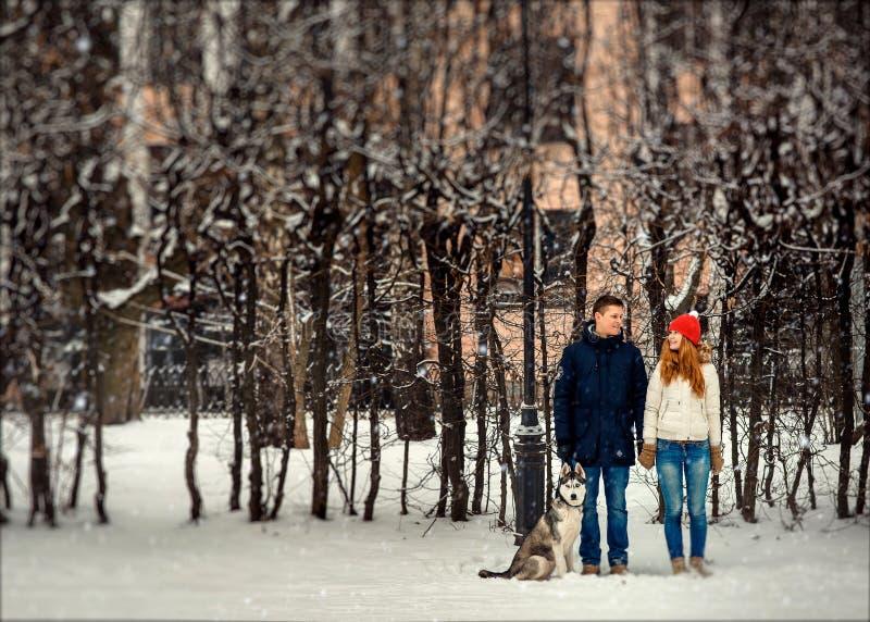 Vista integral de los pares sonrientes que sostienen las manos y el husky siberiano que se sientan cerca de ellos durante las nev fotos de archivo