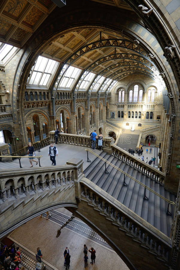 Vista interior del museo de la historia natural fotos de archivo