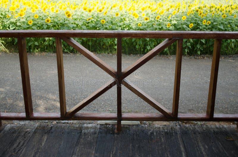A vista interna considera a Front Porch, flor de Sun fotos de stock