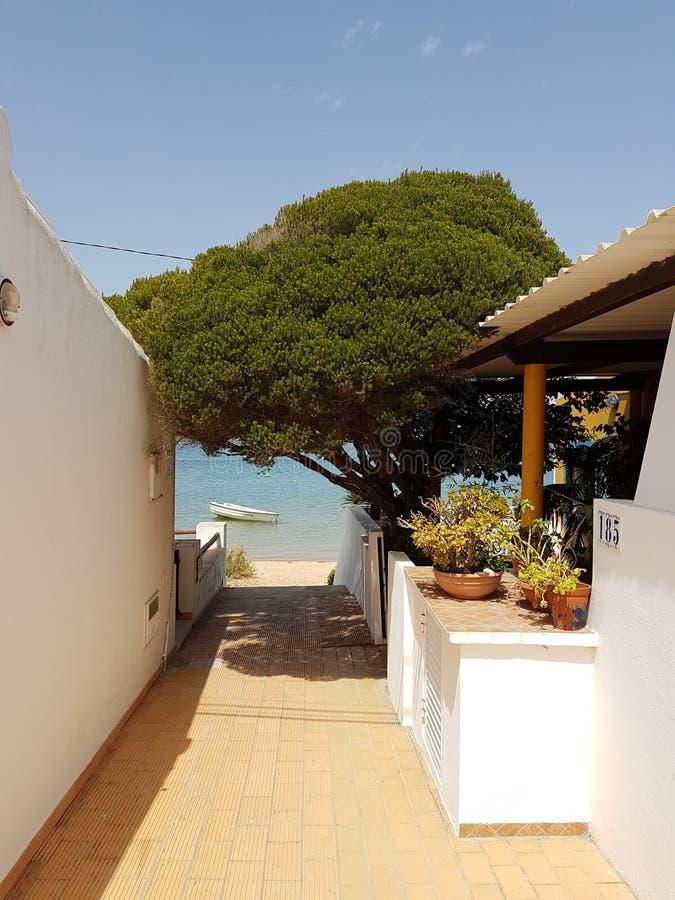 Vista a la playa, con un barco debajo del árbol verde fotografía de archivo libre de regalías