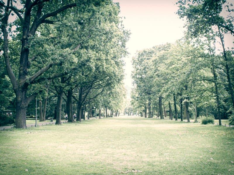 Vista larga através de um parque da cidade em Berlim fotos de stock