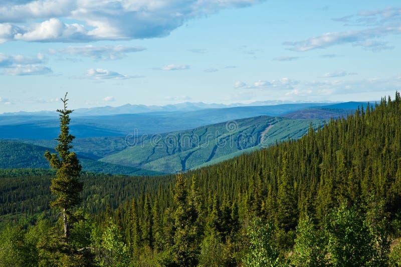 Vista a las montañas blancas de Alaska imagen de archivo libre de regalías