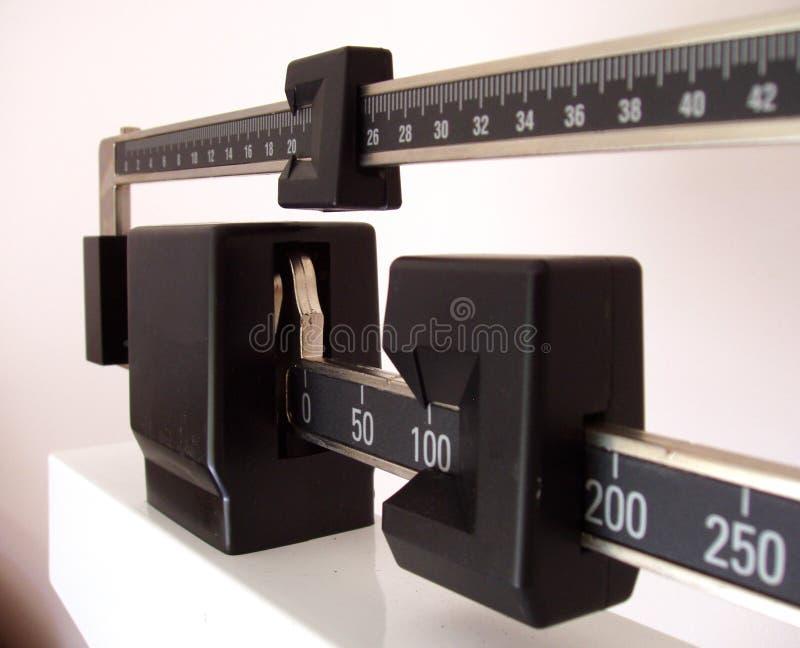 Vista lateral da escala fotografia de stock