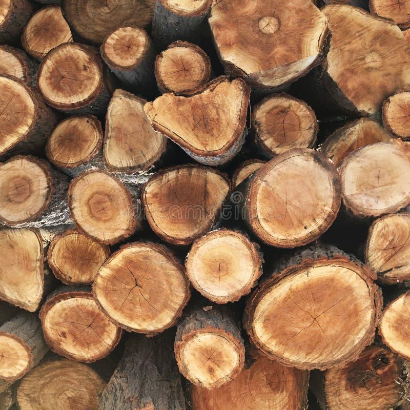Vista lateral de la madera del corte que está en figura redonda imagen de archivo
