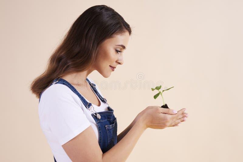 Vista lateral de la mujer hermosa que sostiene el pequeño almácigo fotos de archivo libres de regalías