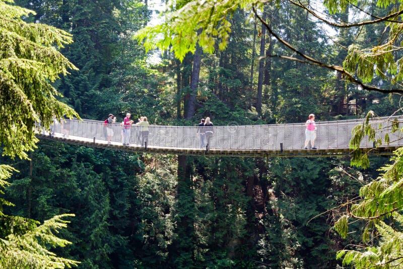 Vista lateral de puente colgante de Capilano en Vancouver, Canadá fotografía de archivo