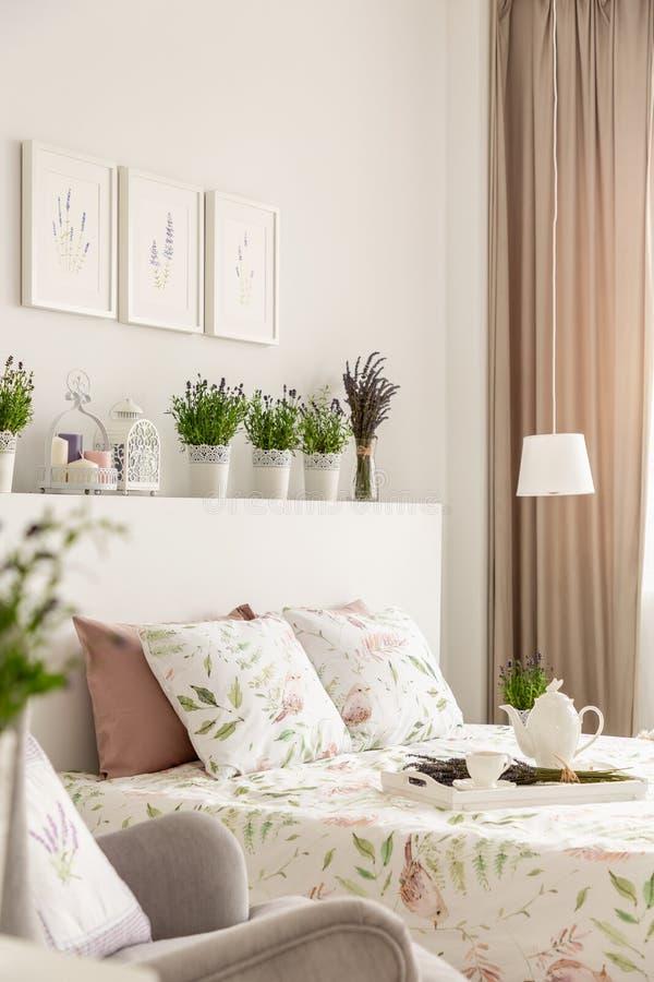 Vista lateral de uma cama, descansos, bandeja com um potenciômetro, plantas em uma prateleira imagem de stock royalty free
