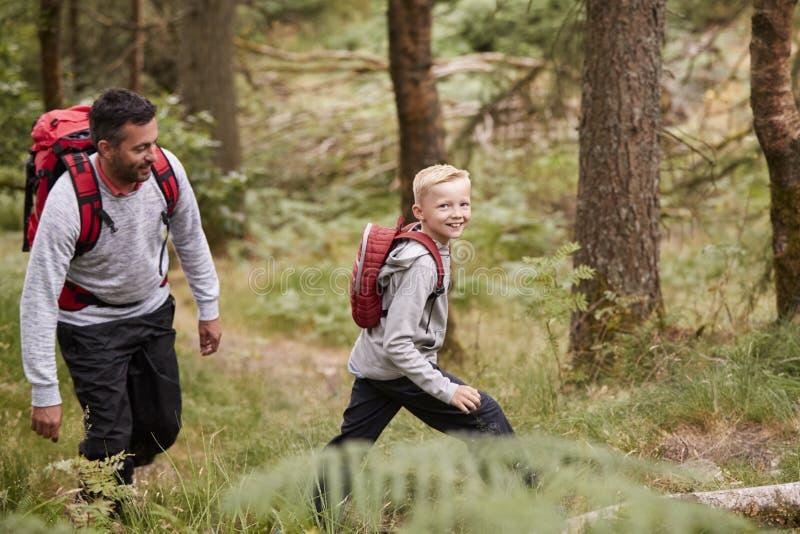 Vista lateral de un muchacho que camina en rastro en un bosque con su padre y que mira a la cámara, foco selectivo imágenes de archivo libres de regalías