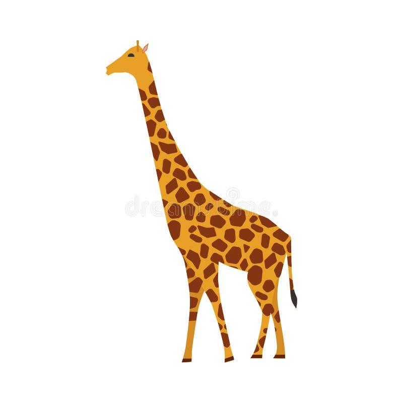 Vista lateral del icono del vector del mamífero de la jirafa Símbolo marrón lindo del safari del carácter animal Herbívoro amaril libre illustration