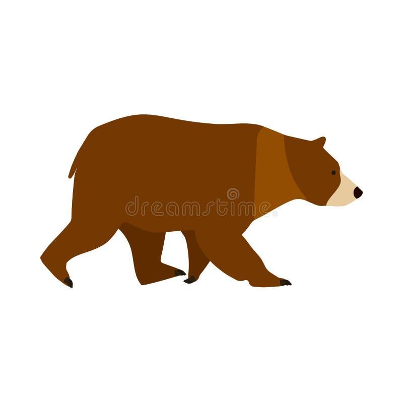 Vista lateral del icono del vector del símbolo del carácter del marrón del oso Ejemplo despredador grande animal del mamífero lin ilustración del vector