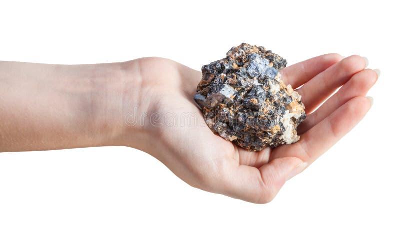 Vista lateral do minério mineral na palma fêmea fotos de stock royalty free