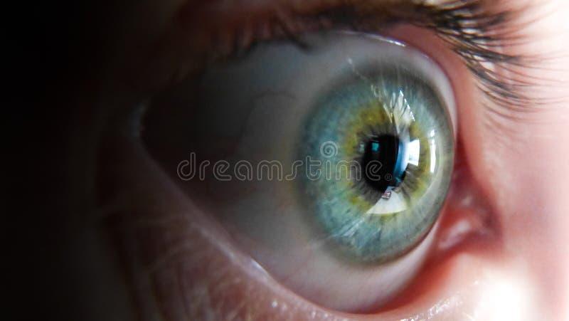 Vista lateral do olho humano azul/verde imagens de stock royalty free