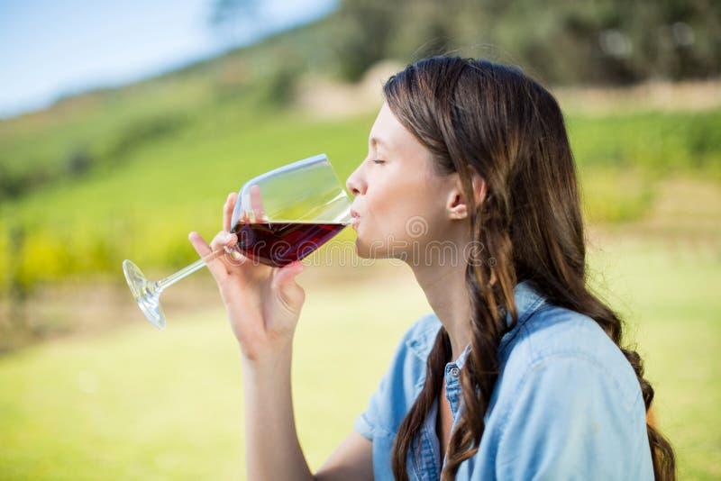 Vista lateral do vinho tinto bebendo da mulher fotografia de stock
