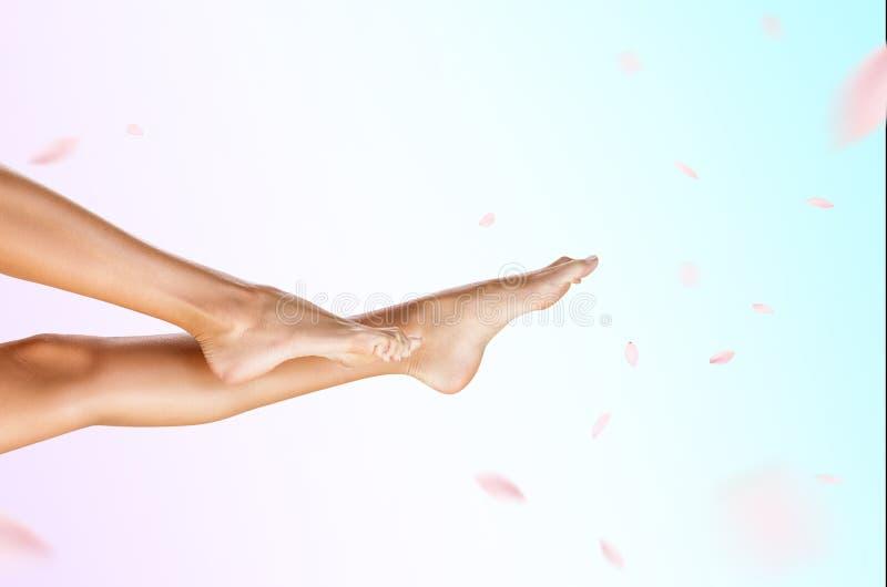 Vista lateral sobre las piernas femeninas perfectas y hermosas fotos de archivo