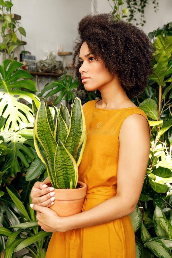 Vista laterale di una condizione della giovane donna nel suo negozio della pianta fotografia stock libera da diritti