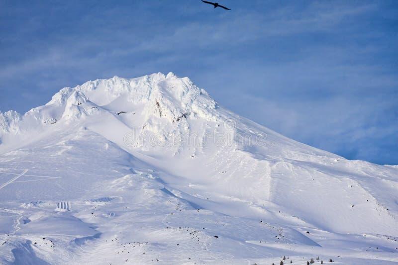 Vista maestosa del cappuccio del supporto nell'Oregon, S.U.A. fotografie stock