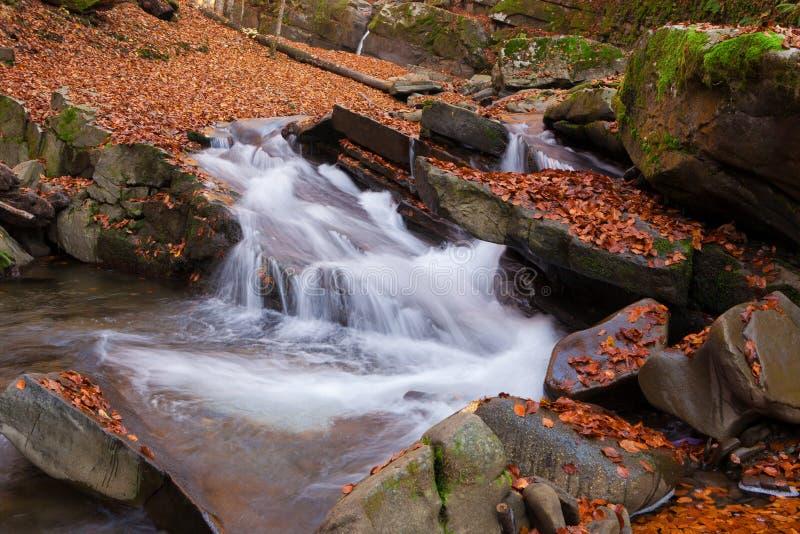 Vista magnífica da cachoeira em Autumn Beech Forest dentro fotografia de stock royalty free