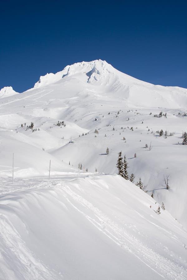 Vista majestosa da capa da montagem em Oregon, EUA. imagens de stock royalty free
