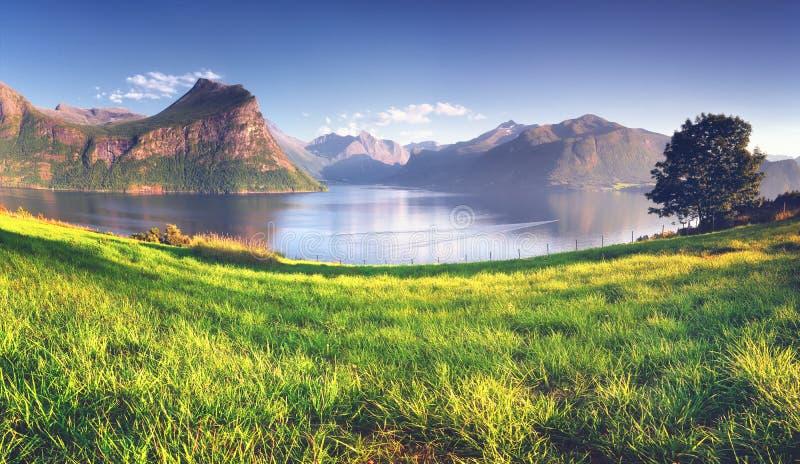 Vista maravilhosa do fiorde norvegian, Romsdalsfjord perto de Andalsnes foto de stock
