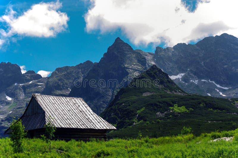 Vista meravigliosa di estate di grandi picchi di montagna Tatry poland fotografia stock libera da diritti
