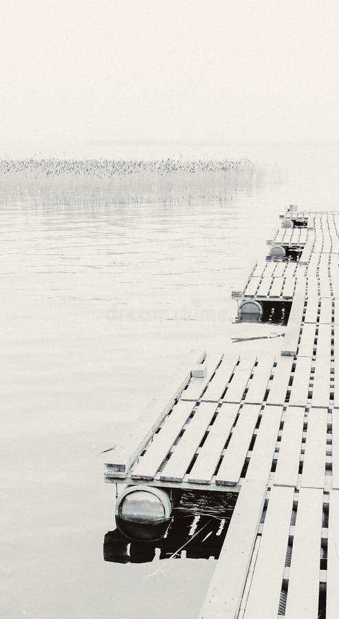 Vista monocromática da doca ao lago em uma manhã nevoenta foto de stock