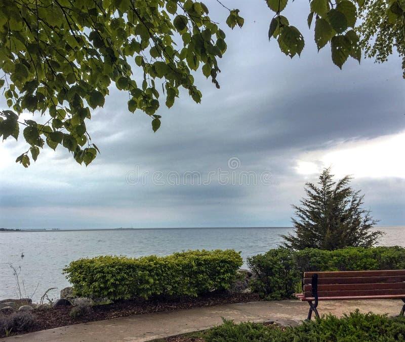 Vista na baía Georgian do banco de madeira sob a árvore de vidoeiro no parque do ponto do por do sol em Collingwood fotos de stock