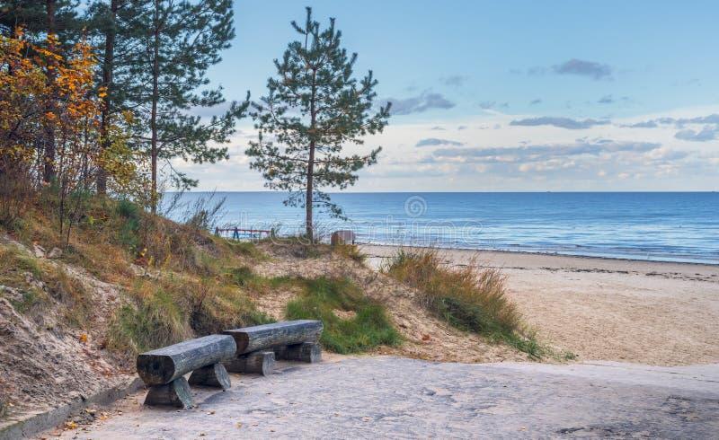 Vista na floresta do Sandy Beach, da duna e do pinho em Jurmala, Letónia fotografia de stock royalty free