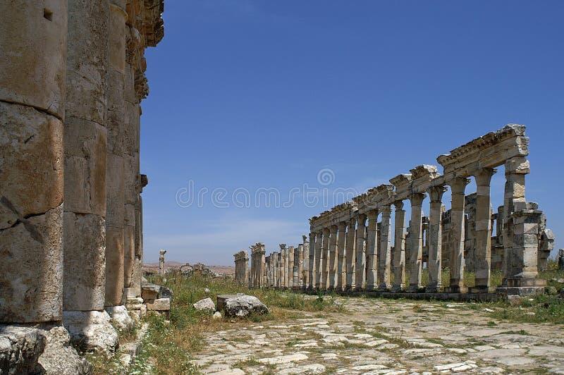 Vista na grande colunata da cidade antiga de Apamea em Síria foto de stock