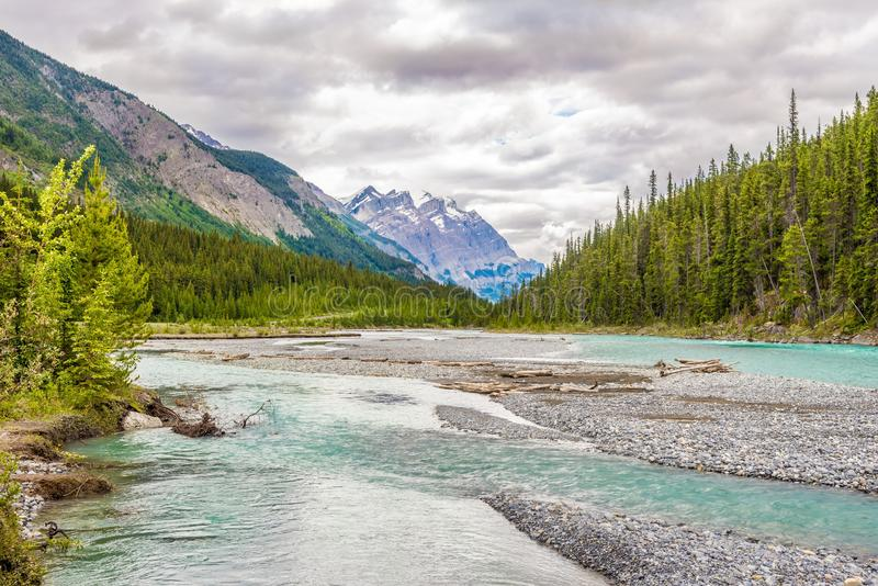 Vista na natureza perto da angra de Coleman do parque nacional de Banff no canadense Rocky Mountains fotos de stock royalty free