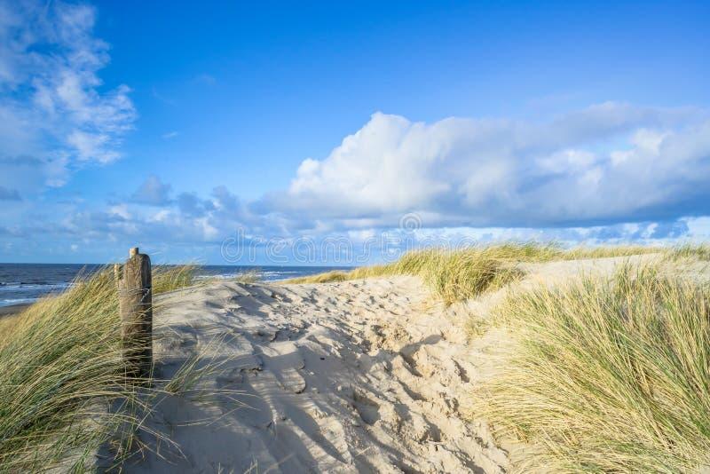 Vista na praia das dunas de areia fotografia de stock royalty free