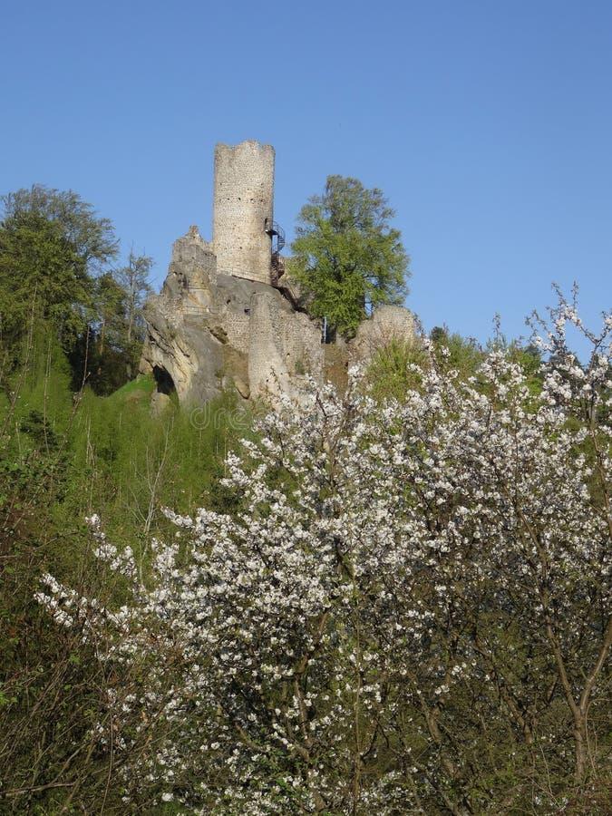 Vista na ruína do castelo de Frydstejn fotos de stock
