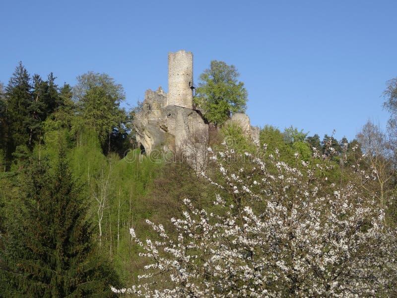 Vista na ruína do castelo de Frydstejn fotos de stock royalty free