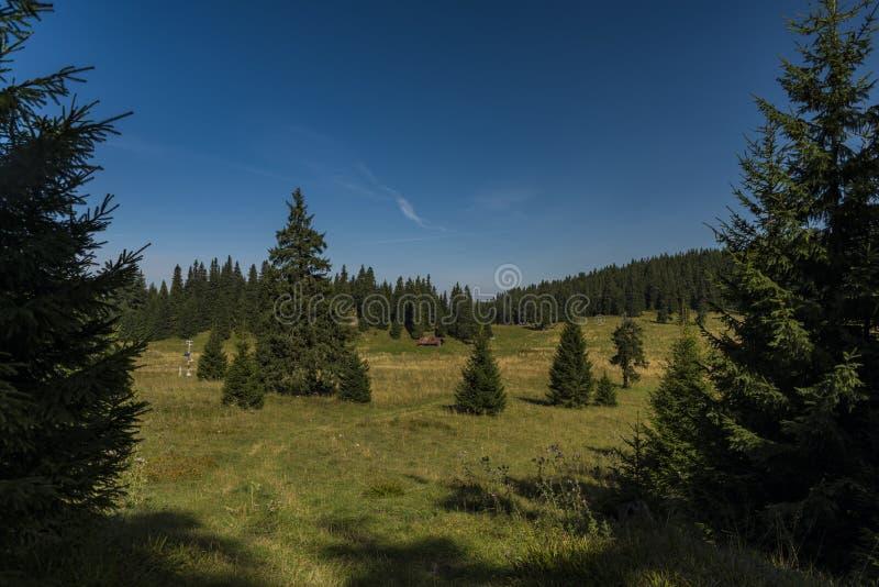 Vista nell'area di Velky Choc in montagne della Slovacchia fotografia stock