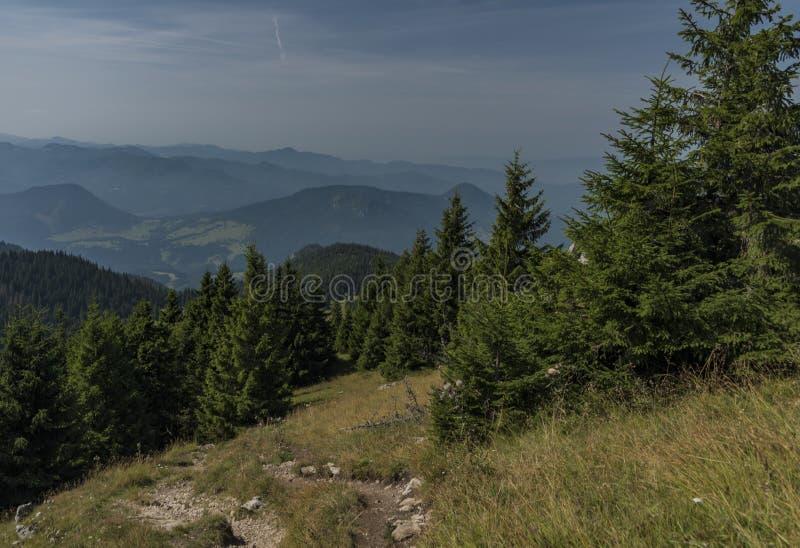 Vista nell'area di Velky Choc in montagne della Slovacchia immagini stock libere da diritti