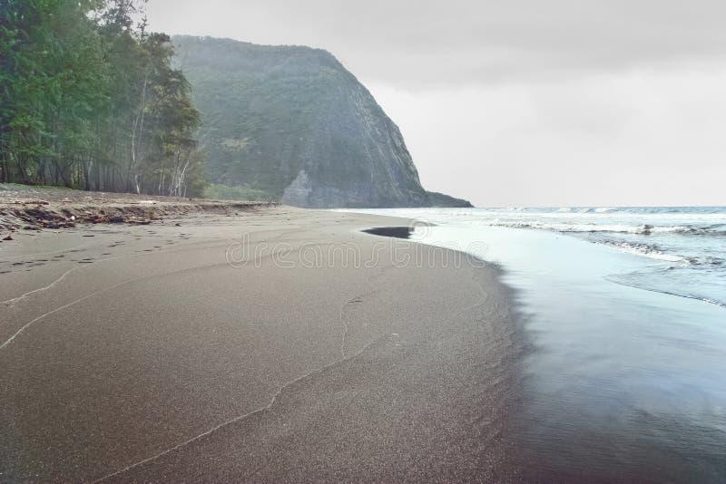 Vista no oceano e na selva fotos de stock royalty free