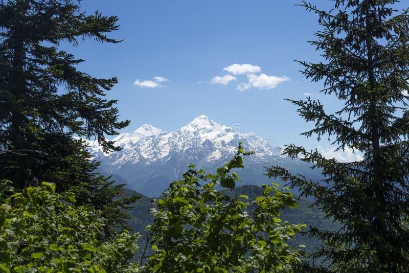 Vista no pico de montanha nevado através das árvores na região de Svaneti de Geórgia, Mestia Escalas de montanhas Montagens de Cá imagens de stock