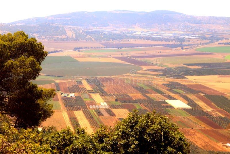 A vista no vale da agricultura com campos e as plantações verde-oliva, é imagem de stock royalty free